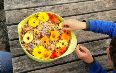 Vivre la nature et la cuisine du jardin