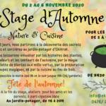 Ekikrok stage automne