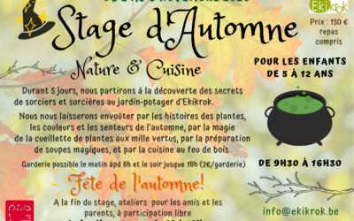 Stage d'automne nature et cuisine du 2 au 6 novembre