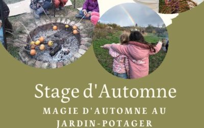 Stage Nature et Cuisine: Magie de l'automne au jardin-potager