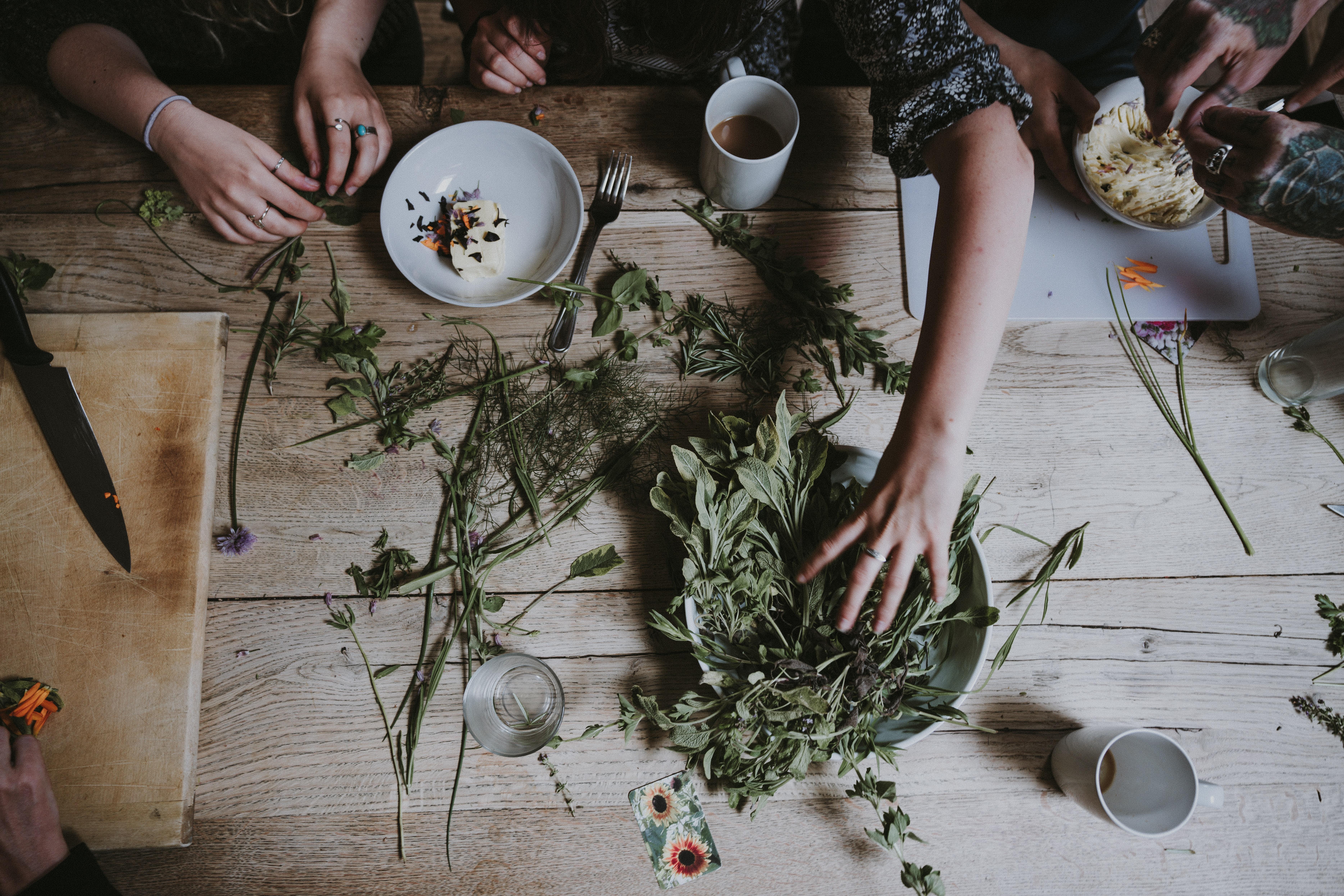 La santé et les plantes compagnes de l'hiver